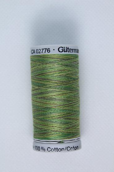 4019 Gutermann Cotton 30 Variegated