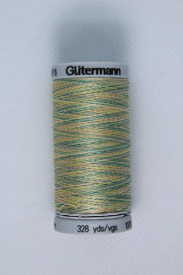 4101 Gutermann Cotton 30 Variegated
