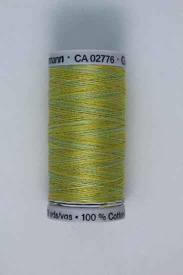 4017 Gutermann Cotton 30 Variegated