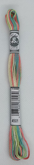 4501 DMC Coloris
