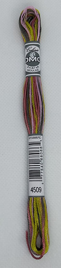 4509 DMC Coloris