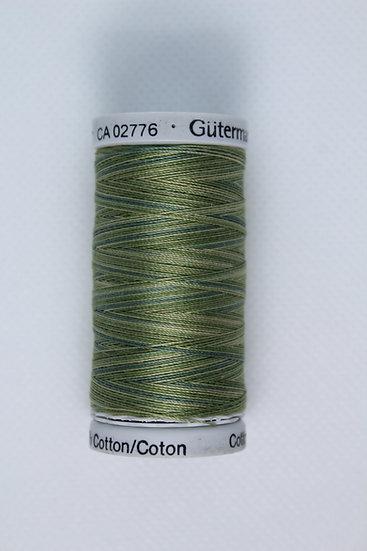 4050 Gutermann Cotton 30 Variegated