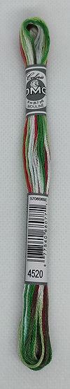 4520 DMC Coloris