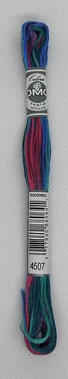 4507 DMC Coloris