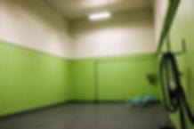 Green pod.jpg