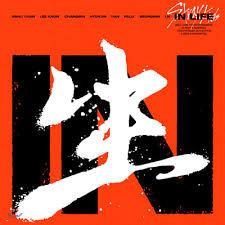 스트레이 키즈 (Stray Kids) - 정규 1집 리패키지 IN生 (IN LIFE)