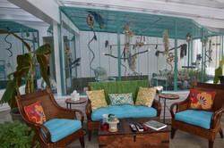 Ashby Bird Aviary Design-1