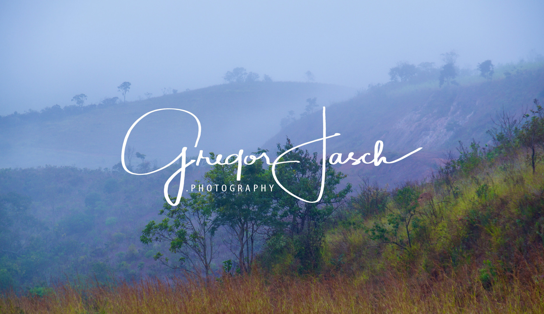 Buy_online_pictures_of_Outdoor_Rainforest_Brazil_gregorjasch.photography