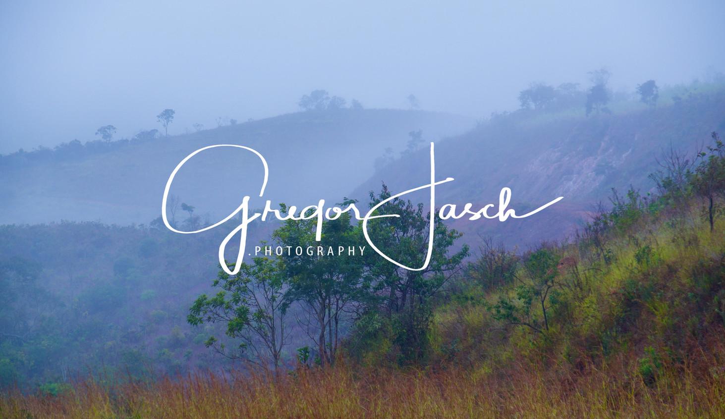 Buy_online_pictures_of_Outdoor_Rainforest_Brazil_gregorjasch.photography