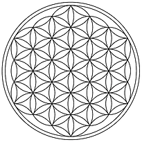 Flower-of-Life-19circles36arcs-enclosed.