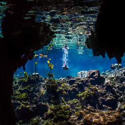 underwater-photographer-underwater-photo-dive-diving-cave-cavediving-snorkeling-cenote-mexico-tulum-underwaterphotography-underwaterphotographer-undervattensfoto-undervattensfotograf-adv.jpg
