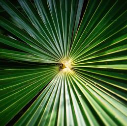 best-hotel-photographer-tulum-riviera-maya-mexico-0181.jpg