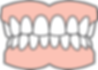 Dentures diagram