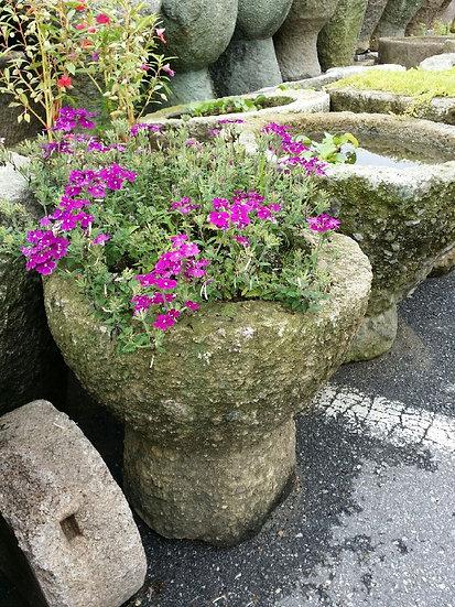 돌 절구 화분 / 물확