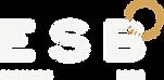 Ecole de surf de Bretagne de Clohars Carnoet au pouldu dans le finistère sud proche de Quimperlé. Cours de surf dès 5 ans sur les plages du Kérou et de Bellangenet. Initiation pour débutant, mini stage et stage semaine de surf, matériels inclus. Location de matériel de surf, location stand up paddle