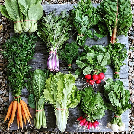 Scroll➡ to see all the veggies we're tak