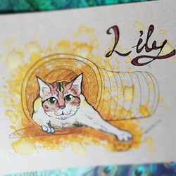 Lily Commission