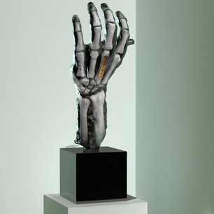 Rodin AR
