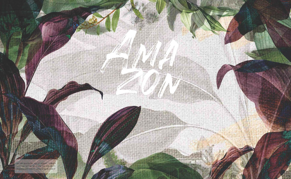 Amazon Mural Collection