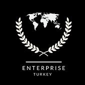 ENTERPRISE-TURKEY LOGO.png