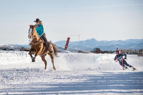 ski-joring_carvinggalicheva.jpg