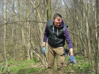 Продолжаем убирать лес