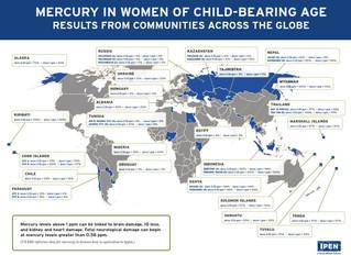 SIARAN PERS: Studi Baru Mengungkapkan Kadar Merkuri yang Berbahaya bagi Perempuan Usia Subur di Selu