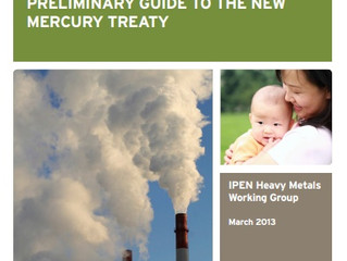IPEN Preliminary Guide To The New Mercury Treaty