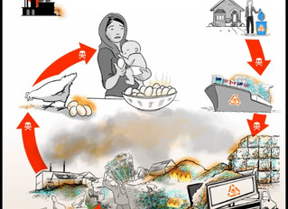 SIARAN PERS: Sampah Plastik Meracuni Rantai Makanan Indonesia: Tingkat Dioksin, PFOS & Bahan Kim