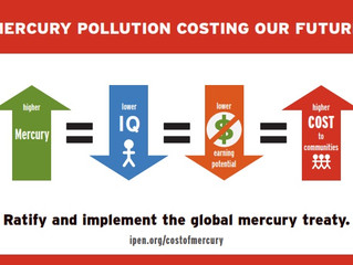 PRESS RELEASE: Study Determines Mercury Pollution Cost Over a Million Dollar in Lost Learning Potent