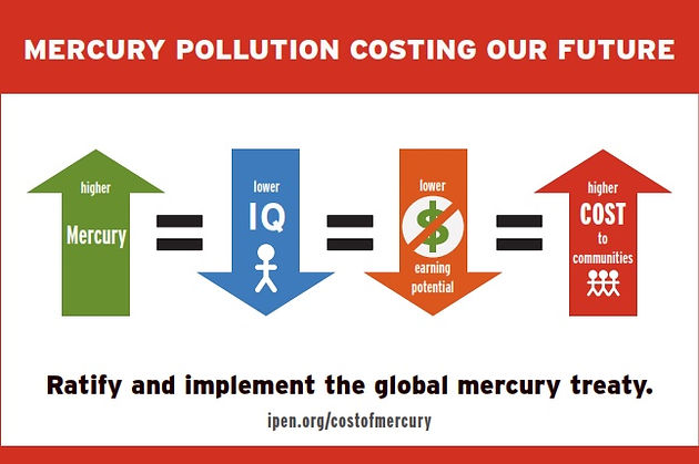 PRESS RELEASE: Study Determines Mercury Pollution Cost Over a