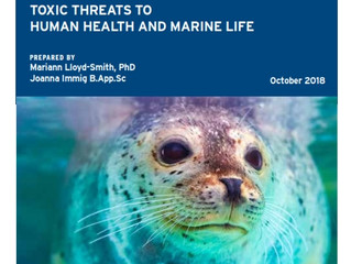 New Report Addresses the Invisible Threat to Ocean Health: The Dual Menace of Toxic Chemical Polluta