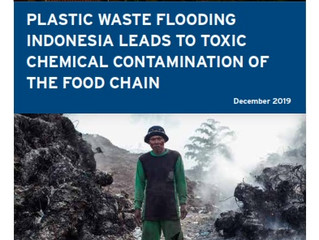 REPORT: Plastic Waste Flooding Indonesia Leads to Toxic Chemical Contamination of the Food Chain