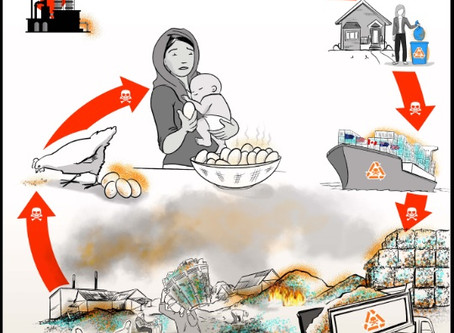 PRESS RELEASE: Plastic Waste Poisons Indonesia's Food Chain: Alarming Levels of Dioxins, PFOS &