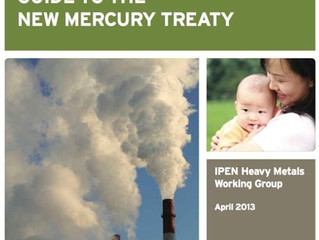 IPEN has just Released an Updated and Final Guide to The New Mercury Treaty.