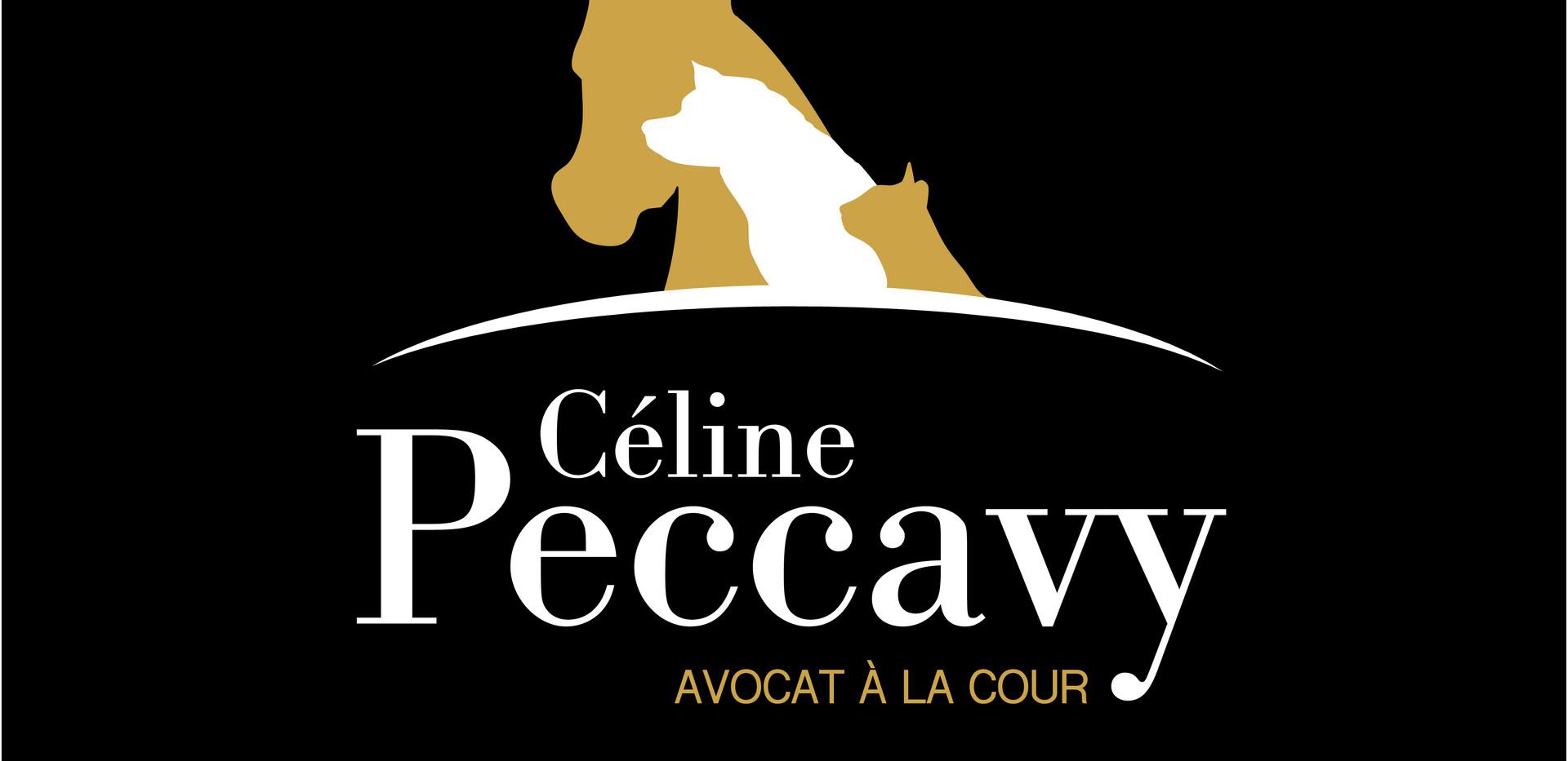 Site de Maitre Peccavy