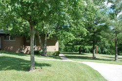 apt front trees