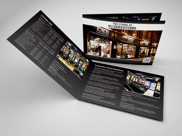 KAOS Brochure.jpg