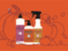 mrs-meyers-pumpkin-scent-products-153555