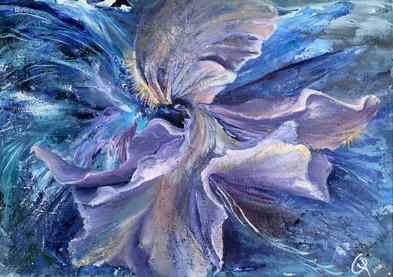 Water Iris by Iryna Chaboryk