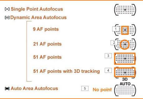 AF Area Modes with focus points.JPG.jpg
