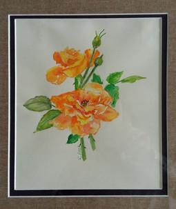 Garden Rose by Rosemarie Nasr