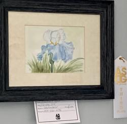 Rosmarie Nasr 3rd Watercolor Garden Iris