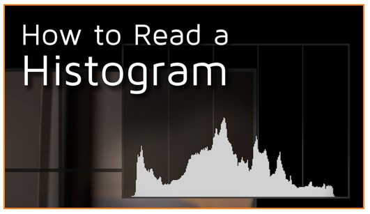 histograms how to read.jpg