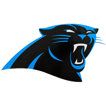 Carolina Panthers.jpg