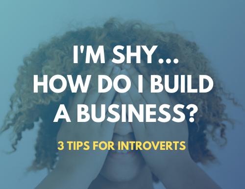 I'm Shy - How Do I Build A Business?