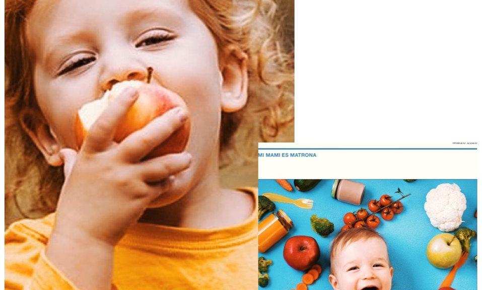 Taller Alimentación complementaria + Guía