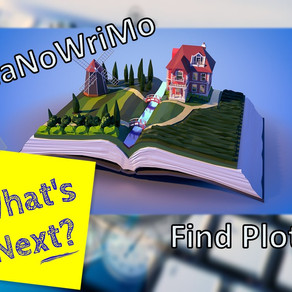 Nanowrimo -What Next? Find Plot.