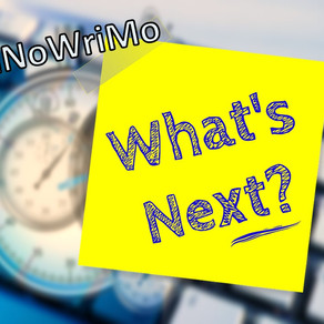 Nanowrimo – what next?