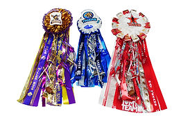 Homecoming, Mum, Mums, Corpus Christi, CCISD, School, Honeycomb, Ribbon, Corsage, Football, High School, Texas, Flower, Flowers, Biggest, Largest, Best, Cheap, Cheapest, DIY, Wholesale, Supplies